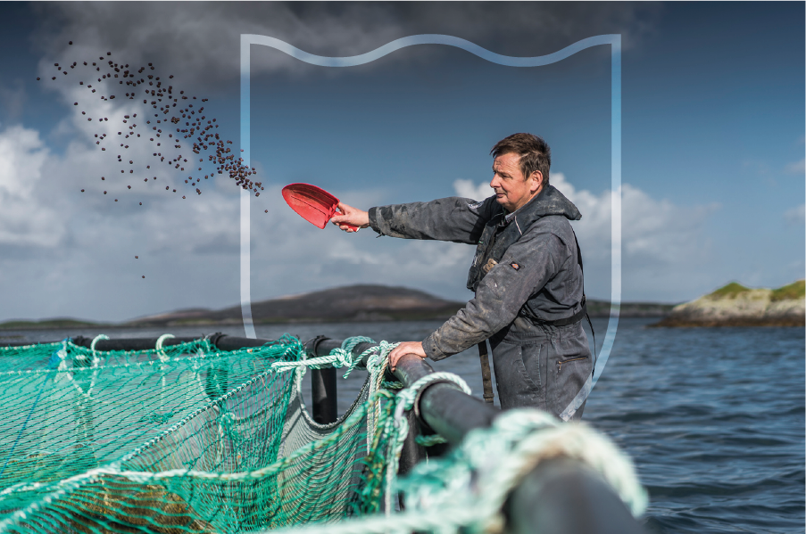 Our Promise - Unrivalled Scottish Salmon