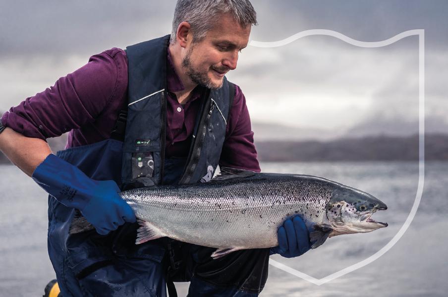Loch Duart - Unrivalled Scottish Salmon